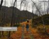 پاییز رنگی در گوشه و کنار جهان (1)
