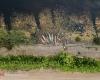 خشکسالی در کمین مازندران